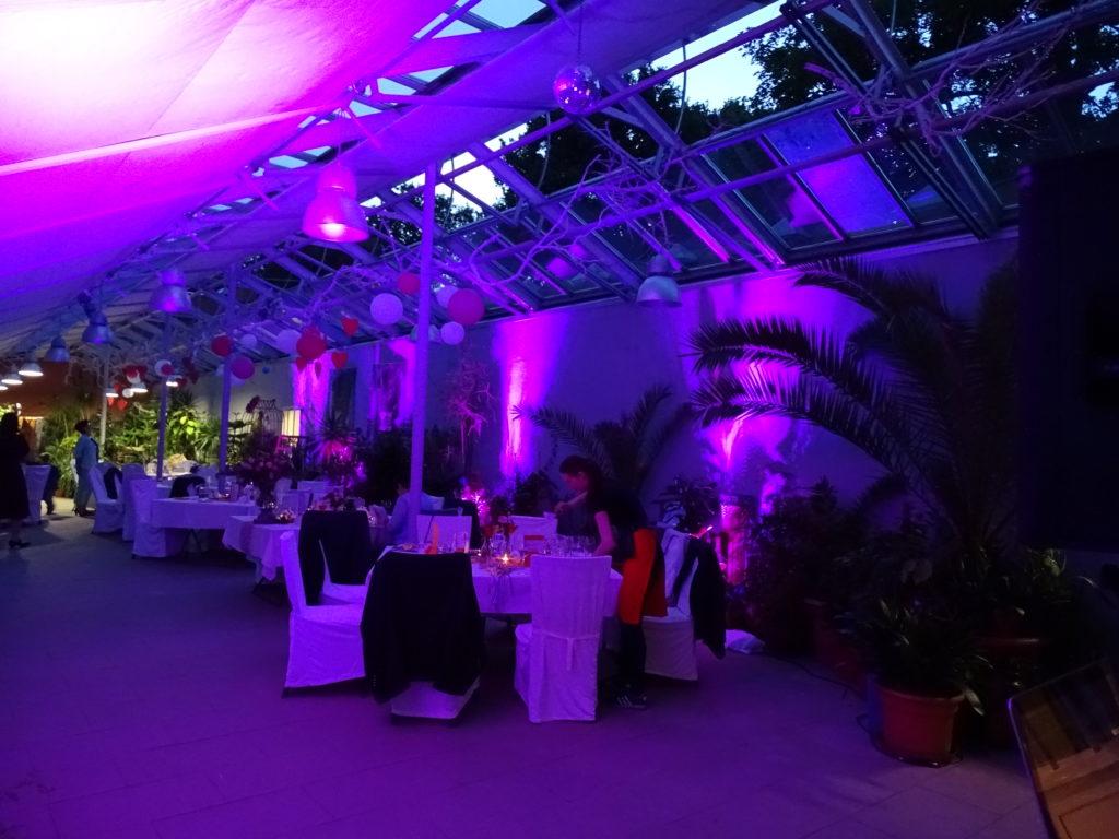 Orangerie Altdöbern Hochzeit DJ